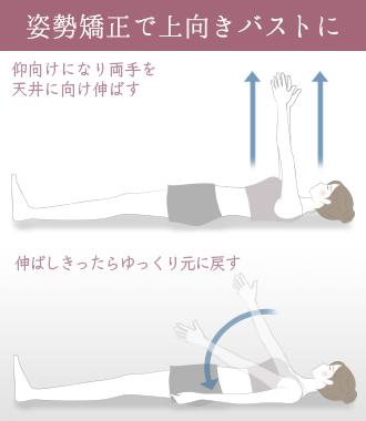 肩甲骨を持ち上げて姿勢を正し、上向きバストを目指す
