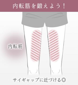 内転筋(太ももの内側)を鍛えると隙間のある脚に近づける