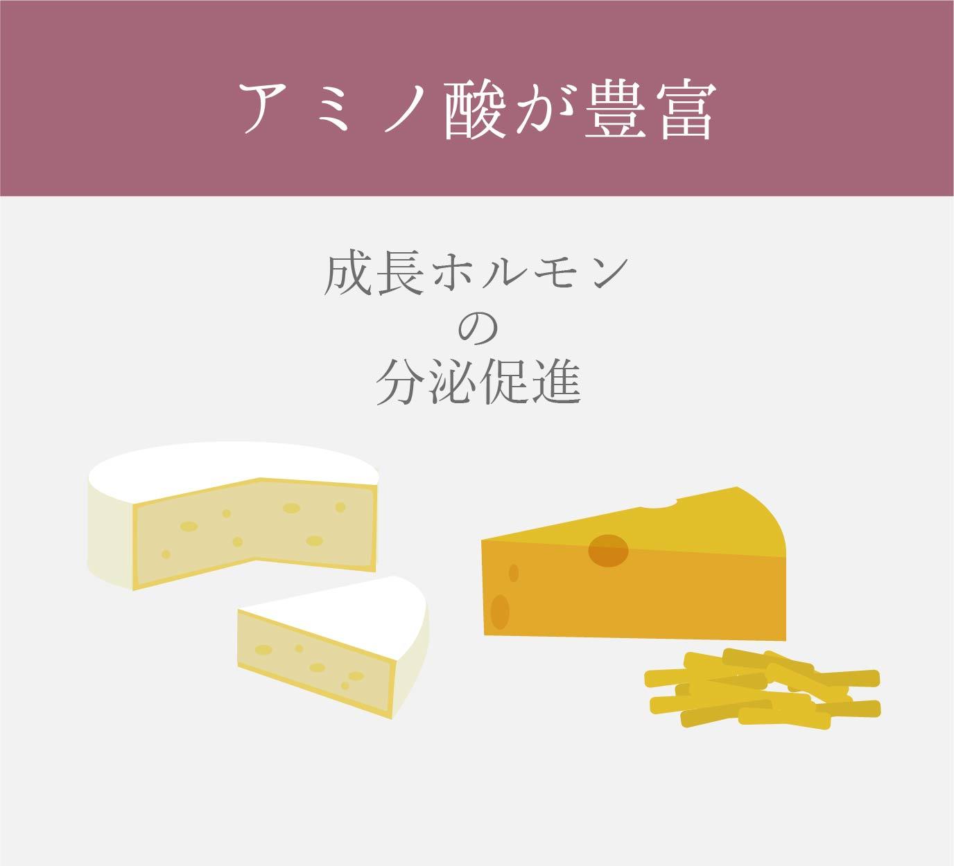 チーズは成長ホルモンを分泌しやすくする効果がある